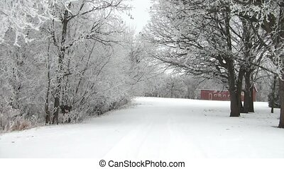 White Trees in Winter With Red Barn