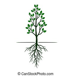 White Trees with roots on green background. Vector Illustration.