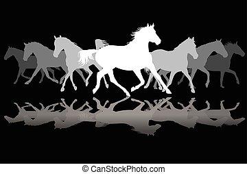 White Trotting horses silhouette on black background