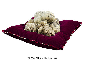 White truffles from Piedmont Italy