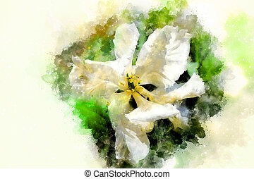 White tulips and softly blurred watercolor background.