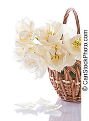 white tulips in a basket