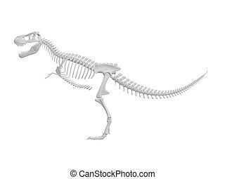 Dinosaur skeleton - white tyrannosaurus Dinosaur skeleton...