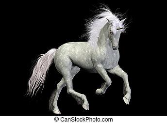 white unicorn - a beautiful white unicorn - isolated on...