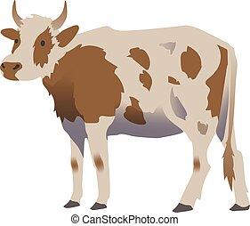 white., vecteur, isolé, vache, illustration