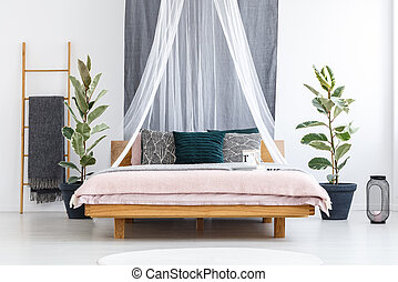 White veil over wooden bed in traveler's bedroom interior with ficus plants and gray blanket on a ladder