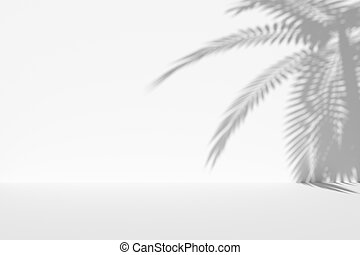White wall and floor with palm shadow and copy-space