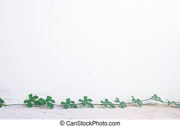 White wall with green leaf
