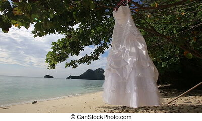 white wedding dress hangs on green tree - white wedding...