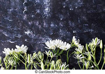 White wildflowers arrangement on black background