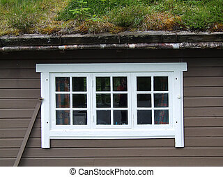 White window and roof with grass - Interesting house with...