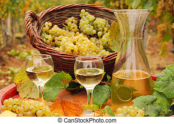 white wine and grape in vineyard