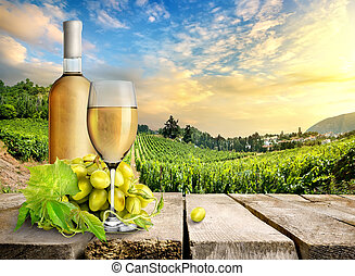 White wine and vineyard