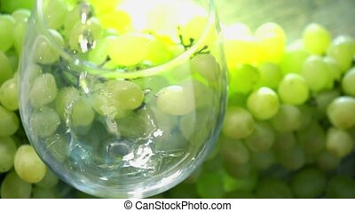 White wine being pored into a glass against bunch of green grapes. Winemaking concept. Super slow motion close up video