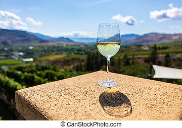 white wine glass against vineyard fields