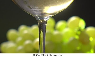 White wine glass and bunch of green grapes. Winery or...