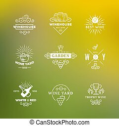 White wine labels vector design on green background