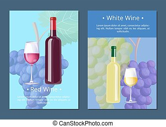 White Wine Poster with Text on Vector Illustration