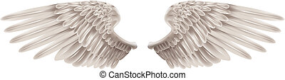 White Wings - Illustration of a pair of outstretched...