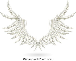 White wings, vector