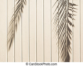 White wooden background with palm leaves shadow.