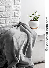White wooden box with gray soft fleece blanket and young Ficus plant in white flower pot on it