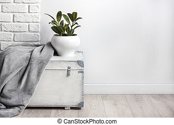 White wooden box with young rubber plant in white flower pot and gray soft fleece blanket on it