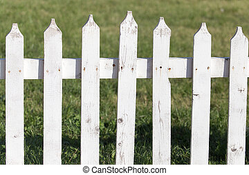 white wooden fence on nature