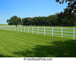 White wooden fence - White fence around Oak Alley Plantation...
