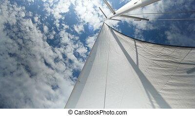 White yacht sail boat sailing over Lake Taupo North Island...