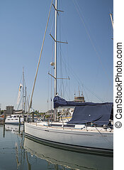 White yachts in the port. Rimini, Italy.