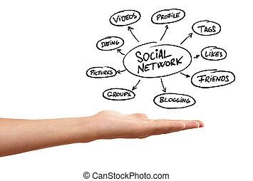 whiteboard, con, mano, y, social, red, esquema