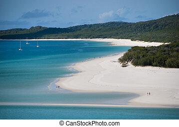 whitehaven, playa, bahía, queensland, australia, agosto,...