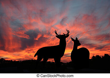 Buck and Doe Whitetail Deer Silhouetted Against a Spectacular Sunset