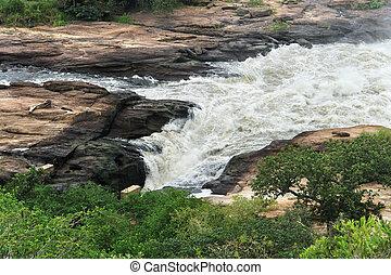 whitewater , σε , murchison, αλίσκομαι , μέσα , ουγκάντα
