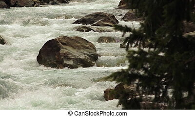 Whitewater rapids from behind a tree - Steady straight on...