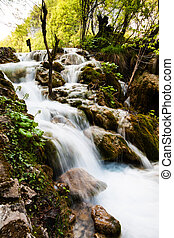 whitewater, rennender , in, der, forest., plitvice, seen, nationalpark, kroatien