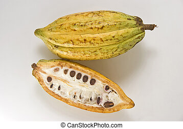 Whole and cross section of ripe cacao fruit