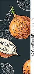 Whole and half onion. Vector vintage engraving illustration