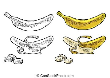 Whole and half peeled banana. Vector black vintage engraving