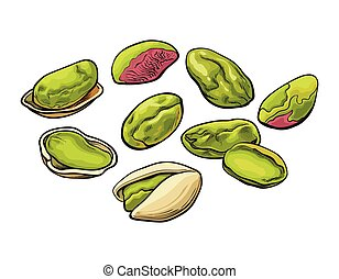 Whole and peeled pistachio nut isolated on a white background.
