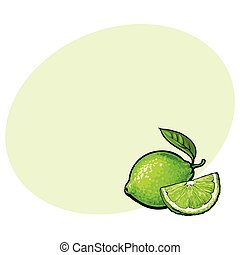Whole and quarter of unpeeled green lime, sketch vector illustration