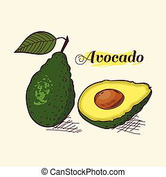 Whole avocado with leaf and slice vector illustration