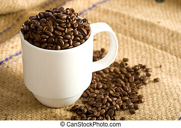 Whole Coffee Beans in Cup