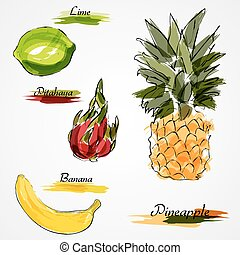 Set of hand drawn vector ripe whole fruits, pineapple, pitahaya, lime and banana on light background