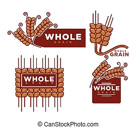 Whole grain cereal bakery product vector icons templates set...