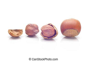 whole hazelnuts on a white background, close-up