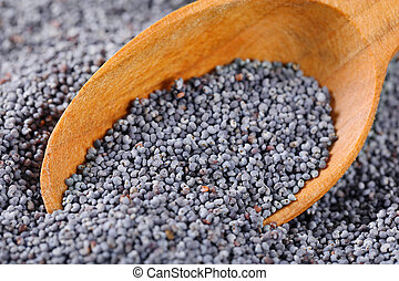 bulk poppy seeds and wooden spoon - detail