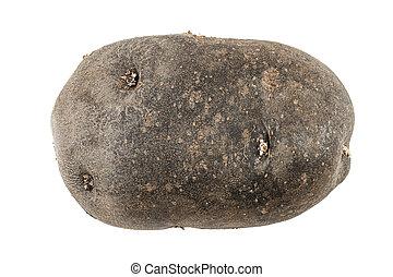 whole purple potato on white background