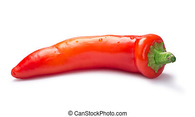 Whole orange Hungarian Hot Wax pepper or paprika (Capsicum annuum). Clipping paths, shadow separated